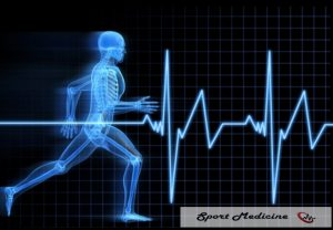 fisioterapeura esqueleto